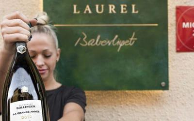 Laurel Webshop – élmény otthon is!