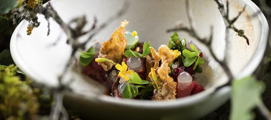 Into the Wild: New Autumn Menu Debuts at Laurel Budapest